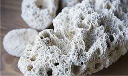塗壁材、珊瑚のいぶき