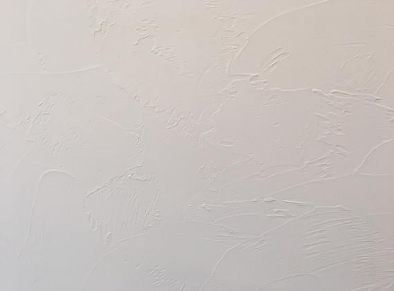 新築 塗り壁