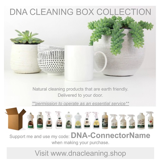 DNA Cleaning Products Domestic Workers.p