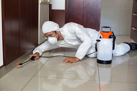 Pest worker using sprayer in kitchen whi