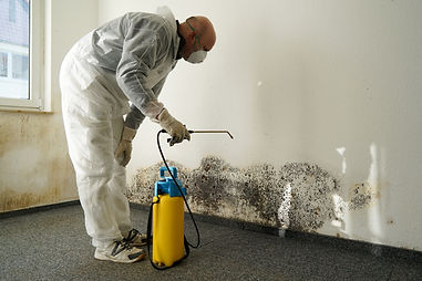specialist in combating mold in an apart