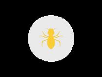 termite circle gray.png