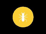 ant circle.png