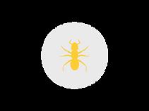 ant circle gray.png