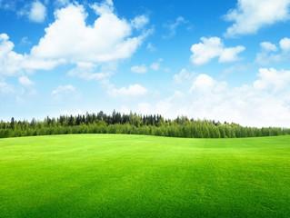 Siempre pensé que lo primero que Di-s creó fueron los cielos y la tierra…