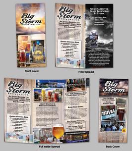 Big Storm Brochure