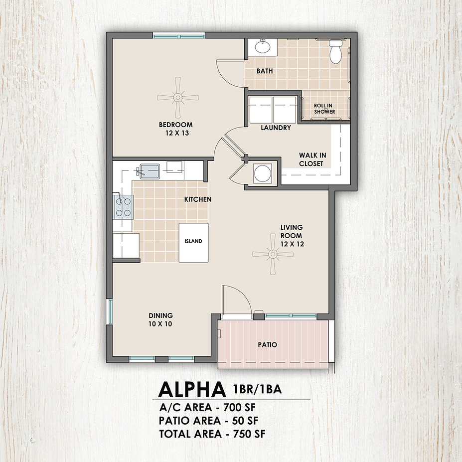 Alpha 1 bedroom/1 bath floorplan
