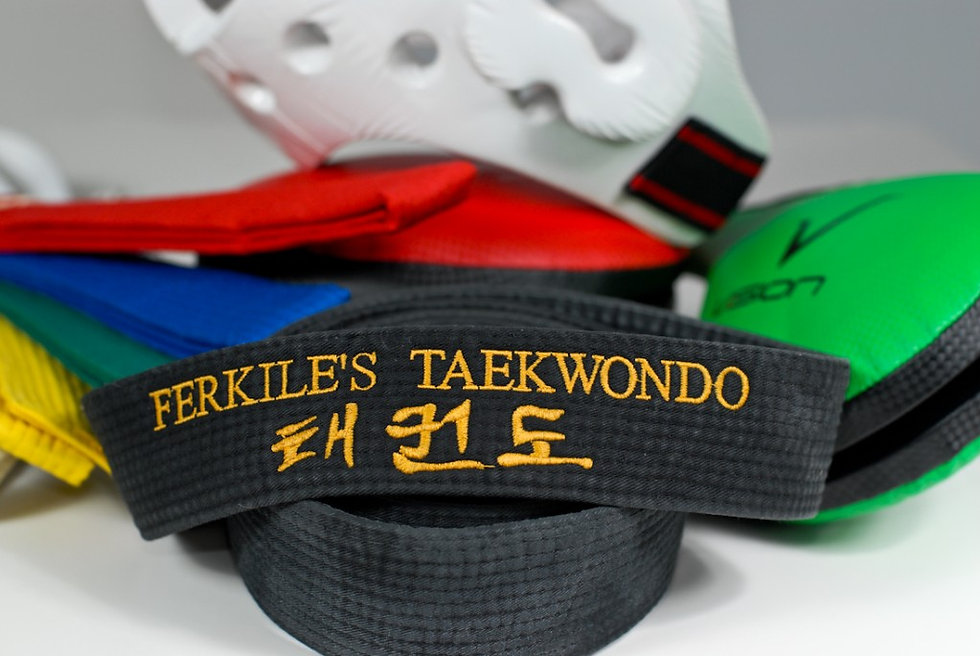 Various Teakwondo Belts and Gear