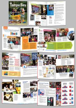 Visit Tampa Bay, 2013 Annual Business Plan