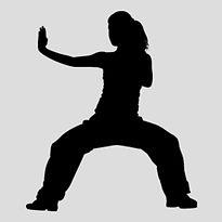 Taekwondo silhouette graphic