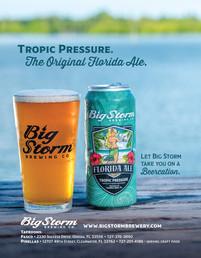 BigStorm_ad.jpg