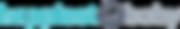 HB_LOGO_color_long%20(1)_edited.png