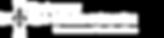 logo_uigse-fond-transparent.png