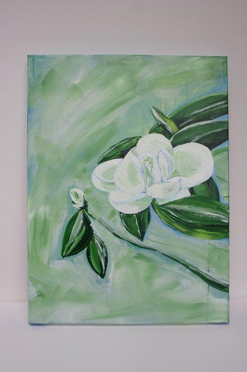 White magnolia - 18x24
