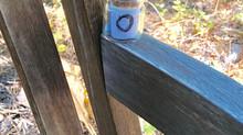 Bottle #169, Granlibakken, Lake Tahoe, California, USA