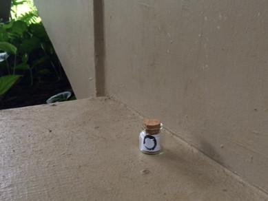 Bottle #30, University of Hawaii, Manoa, USA