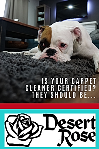 IS your carpet cleaner certified_ they s