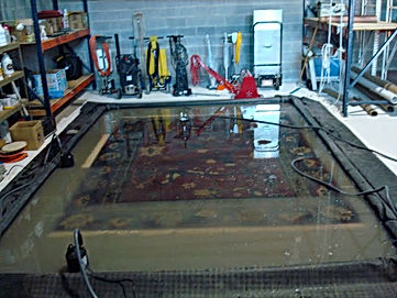 Rug Submersion Treatment