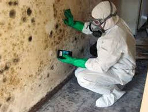 mold in a mask.jpg