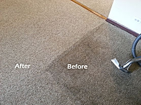 Before & After Carpet Cleaning Picture