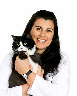 Veterinarian with Cat 02.jpg