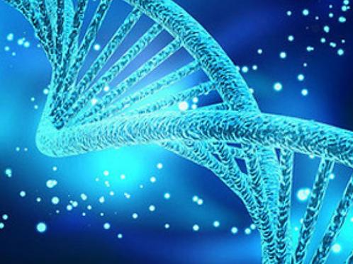 SUPER DNA