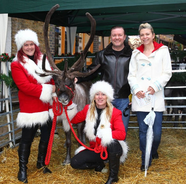 Ricky Gervais meets Reindeer2Hire