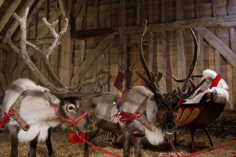 Reindeer2Hire & Santa Chris Nicholas on set