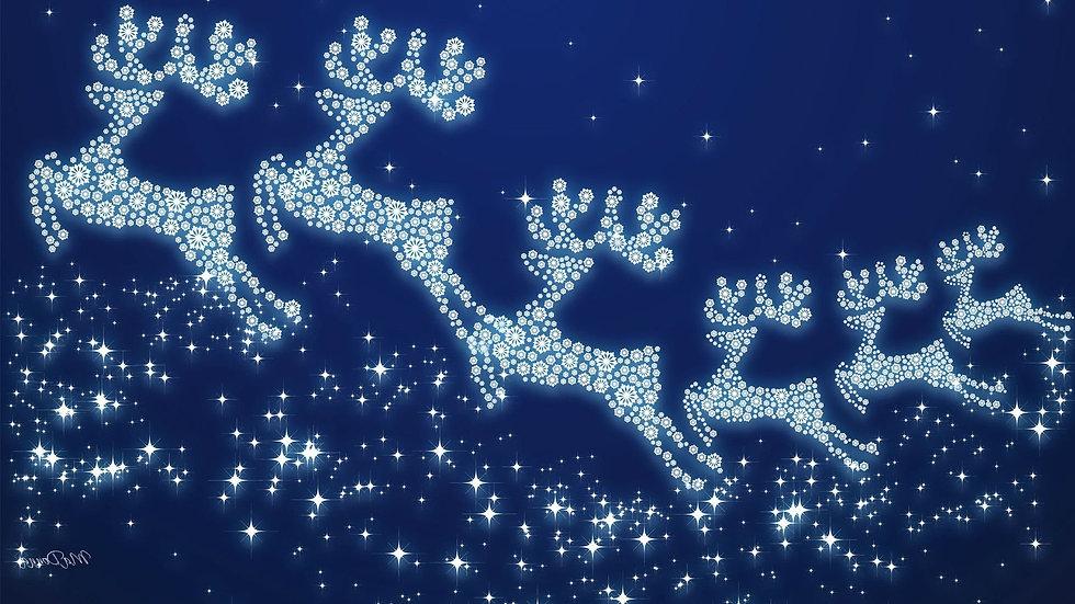 christmas-1621605569837-2905.jpg