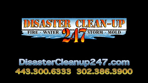 Disaster CleanUp 247 Sanitary Services