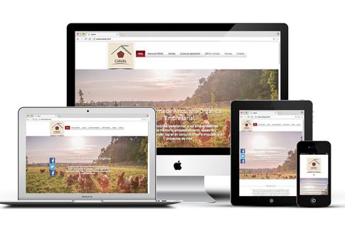 CIAVAL Sitio Web
