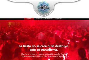 DJ Bindu Sitio Web