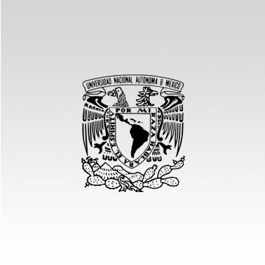 logos-UNAM.png