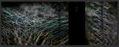 Schermafbeelding 2020-11-16 om 20.51.30.