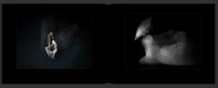 Schermafbeelding 2020-11-16 om 20.48.20.