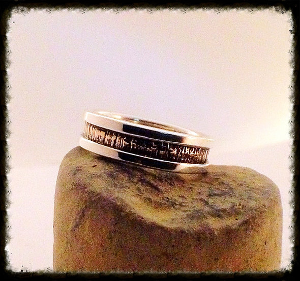 Silver and Bronze Unisex Band