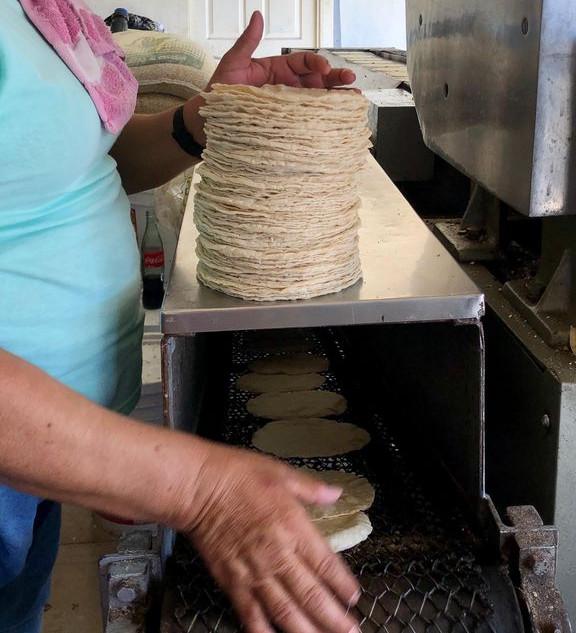 Tortillas – San José del Valle Centro