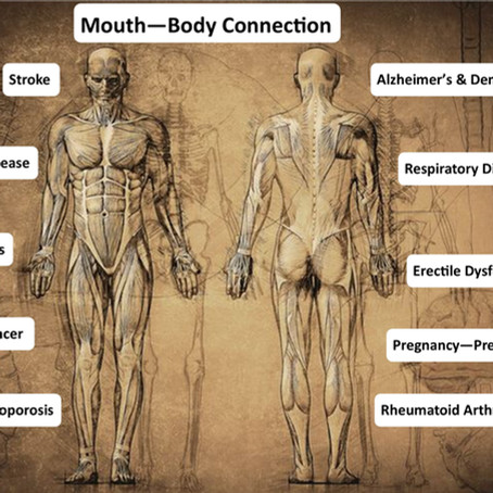 Yes, The mouth is connected to the body!