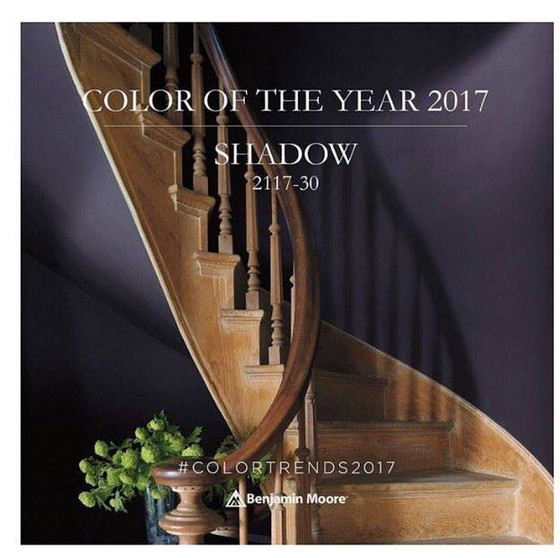 Introducing the 2017 Colour of the year!