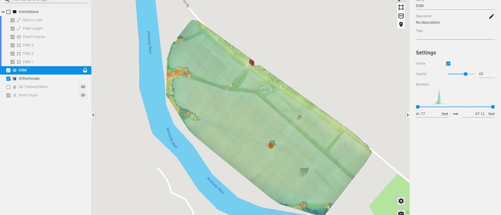 Field DSM Map