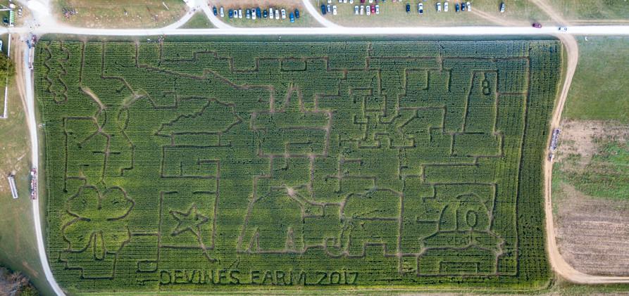Devines Corn Maze 2017