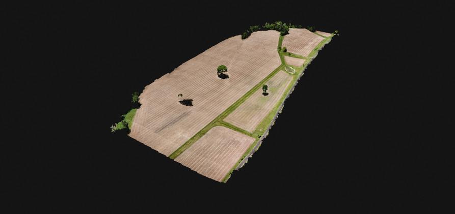 Field 3D