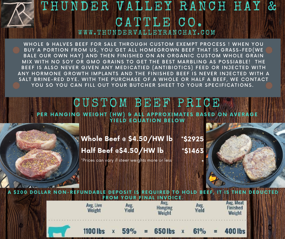 TVR Beef prices.png