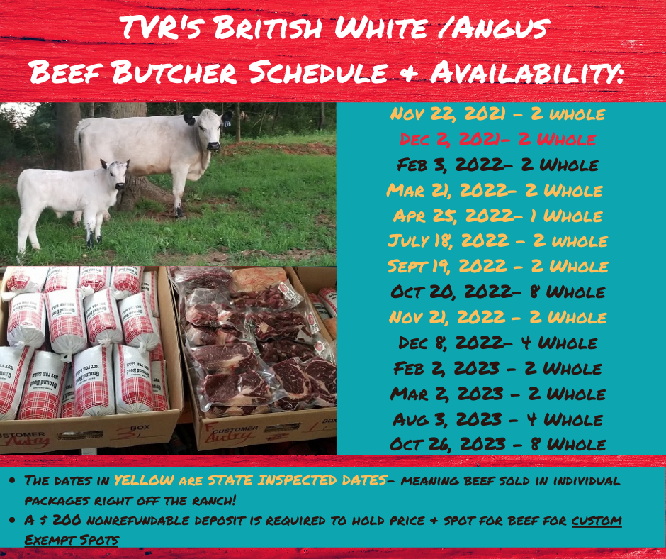Updated TVR's British White BEEF Butcher Schedule & Availability.png