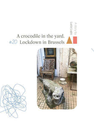 A crocodile in the yard. Lockdown in Brussels