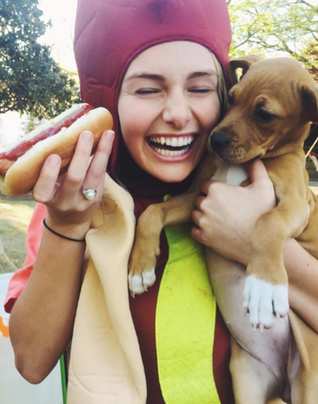 Dawgs, Dogs and Hotdogs