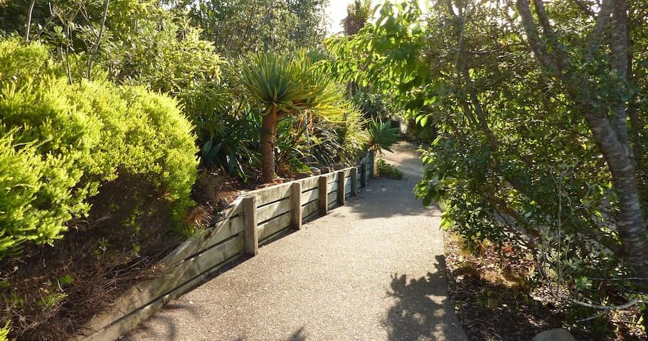 Website - Path to the front door.jpg