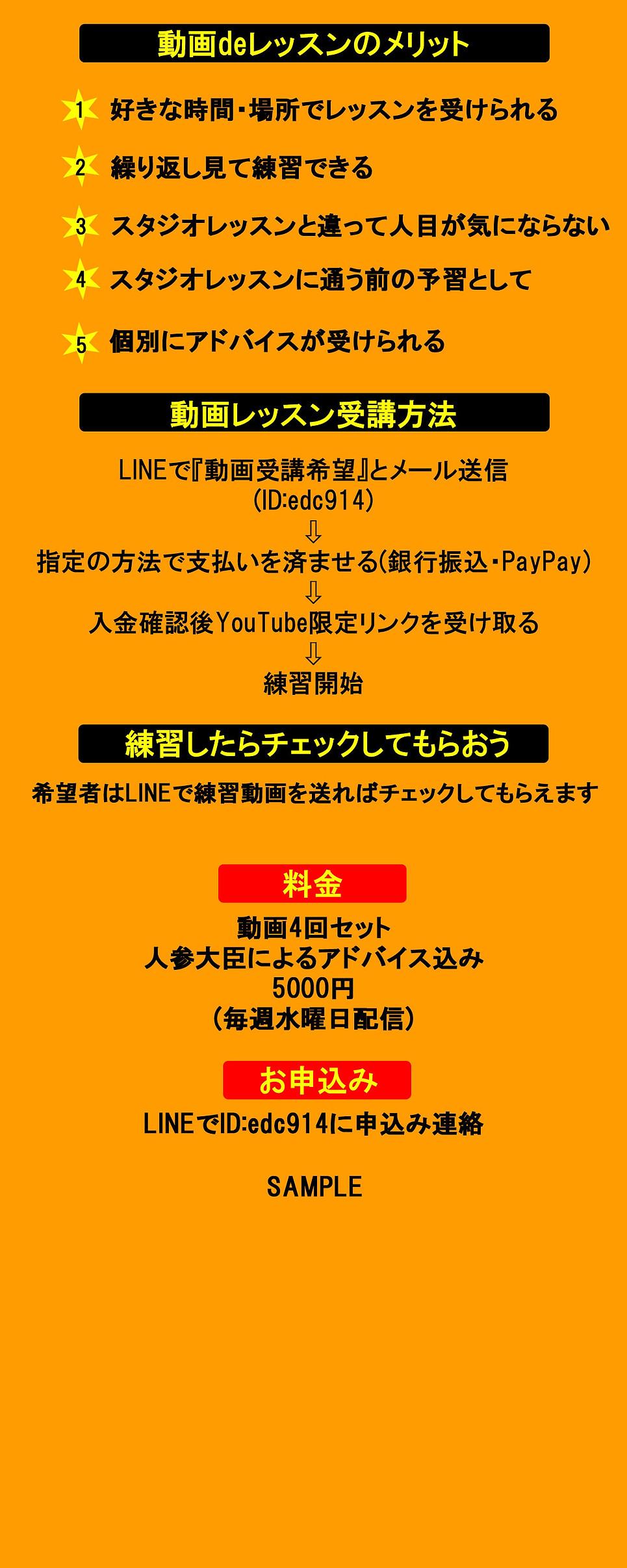 動画レッスン.jpg
