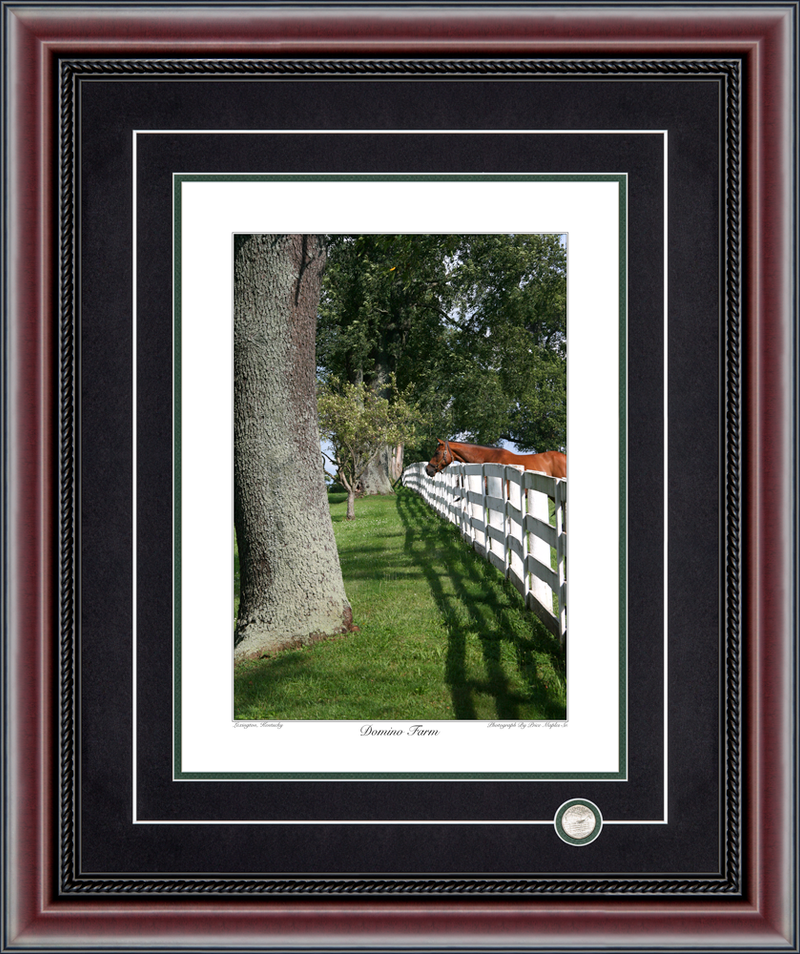 Domino Farm Signed And Numbered Photograph By Price Maples Sr. Framed By Price Maples Sr. Art & Framing Custom Frame Shop And Art Gallery In Lexington, Ky