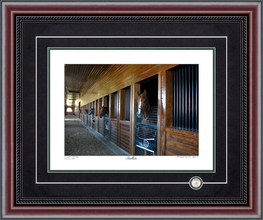 Stallen Signed And Numbered Photograph By Price Maples Sr. Framed By Price Maples Sr. Art & Framing Custom Frame Shop And Art Gallery In Lexington, Ky